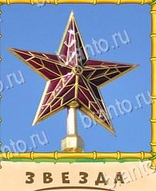 Птица говорун уровень 11 - звезда